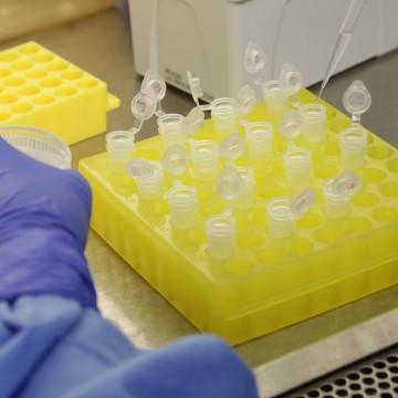 Vacina própria da Fiocruz pode ter testes clínicos em 2021