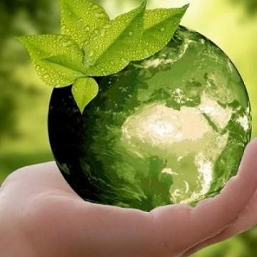 O desenvolvimento sustentável na pauta dos futuros prefeitos
