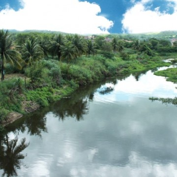 Especialista esclarece sobre Mata ciliar do Rio Ipojuca e a importância desse tipo de vegetação