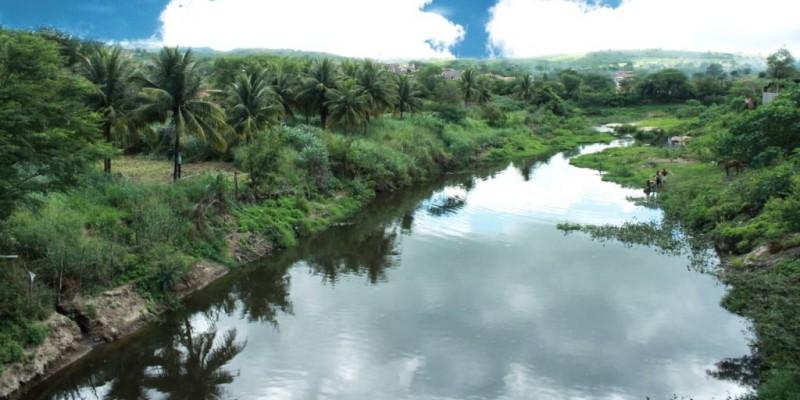 São extremamente importantes paraa proteção de rios e lagos, assim como são os cílios dosolhos, por isso o termo 'ciliar'