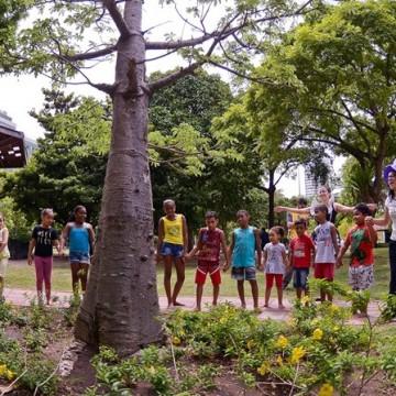 Econúcleo Jaqueira recolhe doações para o Natal Solidário