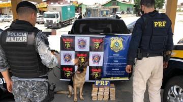 PRF e Biesp apreendem mais de 24kg de droga em São Caetano