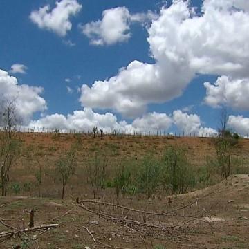 Dos 184 municípios pernambucanos 114 estão em situação de emergência por causa da estiagem