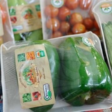 Vendas da indústria de alimentos e bebidas alcançam melhor resultado desde 2013