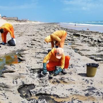 Governo de pernambuco remove vinte toneladas de óleo do litoral sul