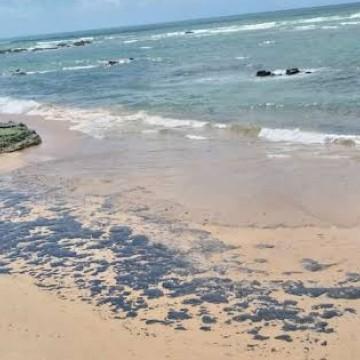 Especialista destaca os prejuízos ambientais nas praias nordestinas