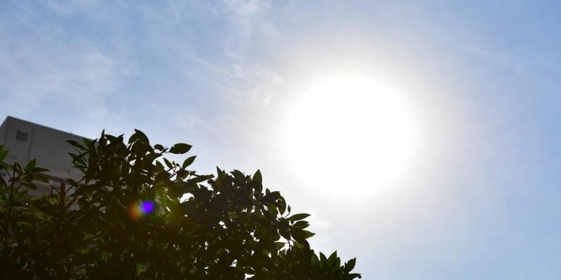 Em 17 de janeiro a temperatura atingiu um pico de 34,6°C