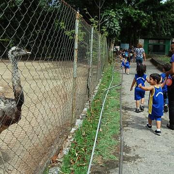 Parques de diversão tem um aumento de 60% em visitações