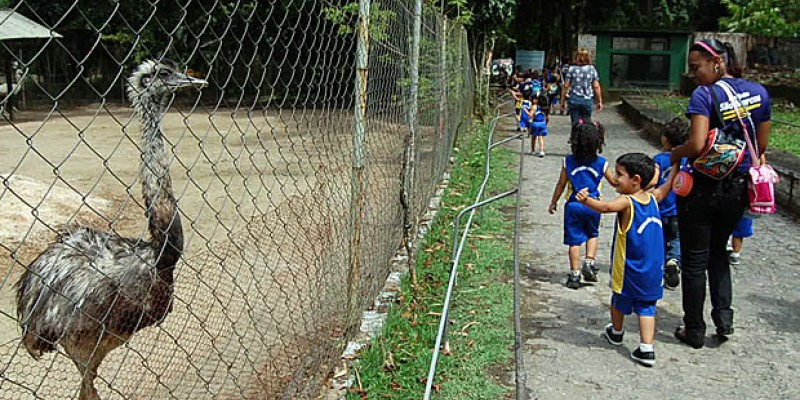 Os meses entre setembro e março são considerados a alta estação dos parques temáticos e aquáticos do Brasil.