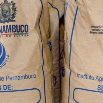Programa Campo Novo inicia distribuição de sementes no Agreste