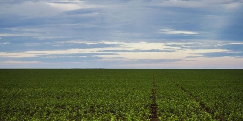 A concessão de títulos de terra será destinada, na maior parte, a pequenos produtores