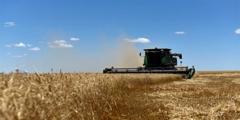 Segundo o setor, agora são 750 milhões de litros do etanol de milho norte americano sem nenhum imposto no mercado interno