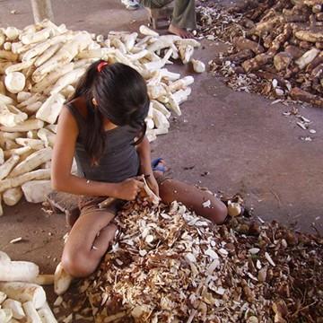 Brasil não cumprirá promessa de erradicar o trabalho infantil até 2020