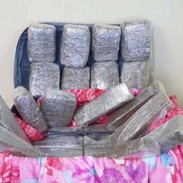 PF já apreendeu quase 28 kg de cocaína e 17 kg de maconha no Aeroporto dos Guararapes