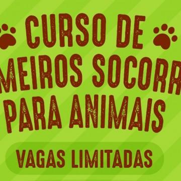 Curso sobre primeiros socorros para animais será oferecido em Caruaru