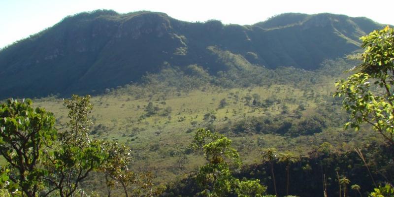 O cerrado é o segundo maior bioma da América do Sul
