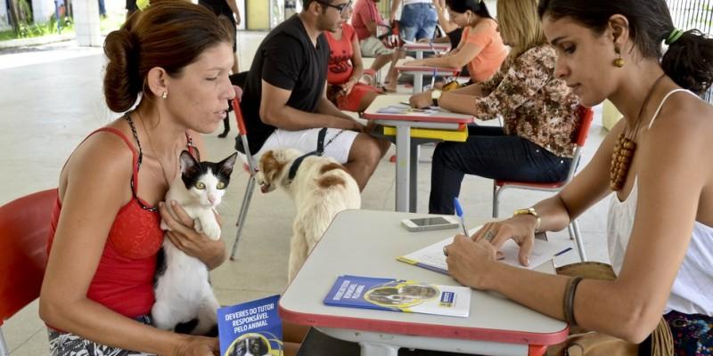 O atendimento gratuito dos caninos e felinos do Recife acontece das 9h às 12h