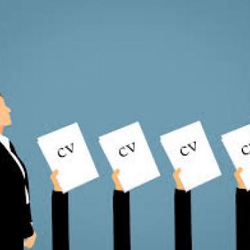 Quando trocar de emprego é a melhor opção?