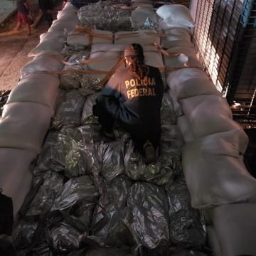 Polícia Federal apreende mais de uma tonelada e meia de drogas em caminhão com carga de milho