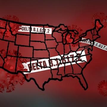 As Causas do Aumento de Casos de Covid-19 nos EUA