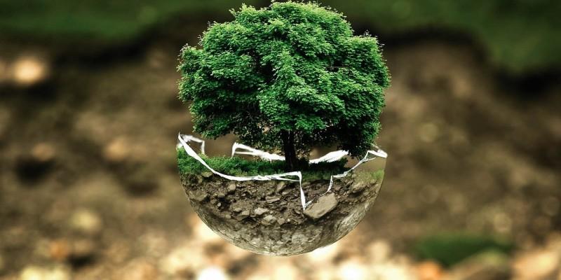 Professor destaca a importância de estender a conscientização ambiental durante todos os dias do ano