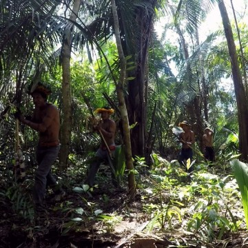 Invasões a terras indígenas são investigadas pelo MPF