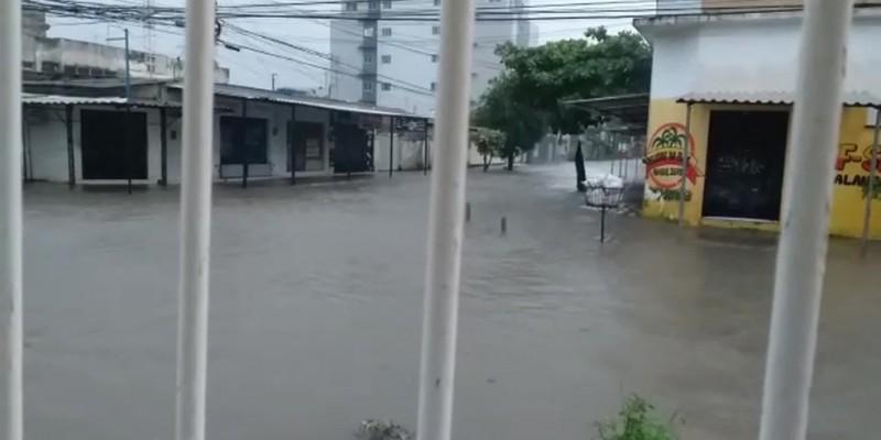 Uma árvore caiu sobre uma creche na zona norte da capital e há pontos de alagamento em ruas e avenidas de diferentes cidades do Grande Recife
