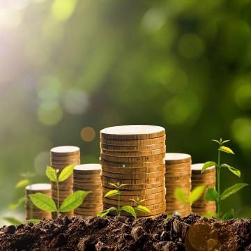 Panorama CBN: Os desafios da sustentabilidade para 2021