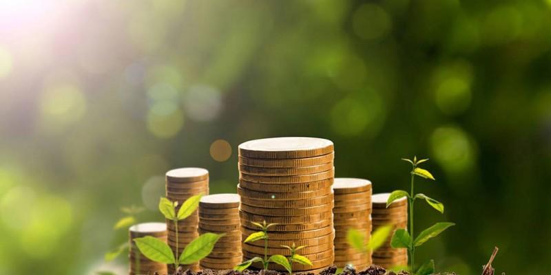O consultor financeiro, Walace Oliveira, também destacou qual o momento certo para investir