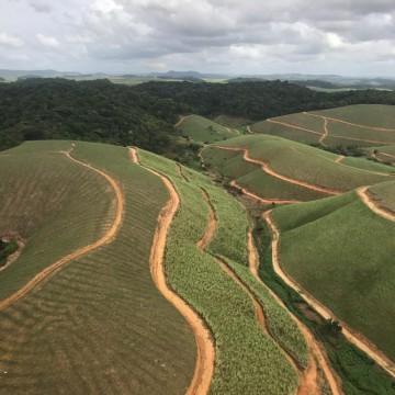 Mecanização nas usinas avança em Pernambuco
