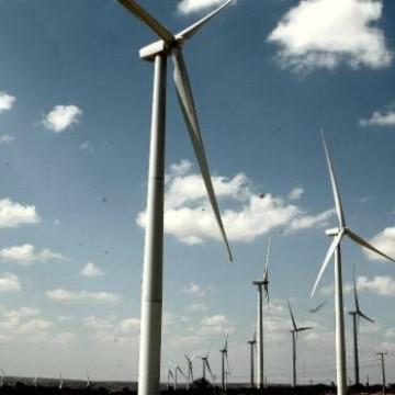 Pernambuco tem grande potencial de produção de energia eólica