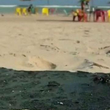 Prejuízos crescem com contaminação do mar e governo anuncia seguro defeso para pescadores