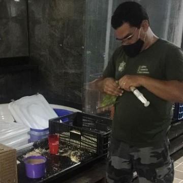 Dois homens recebem multa de R$ 4 milhões por tráfico de animais silvestres