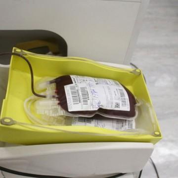 Hemope promove o agendamento das doações de sangue durante a pandemia da Covid-19