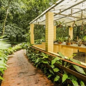 Jardim Botânico do Recife comemora 41 anos