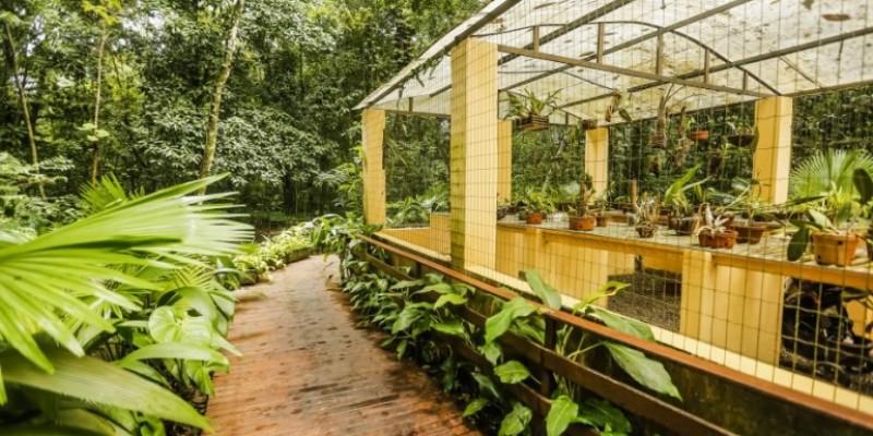 A partir de agora o equipamento passa a integrar uma rede de troca de sementes feita pelas capitais brasileiras, com apoio dos Jardins Botânicos de cada cidade