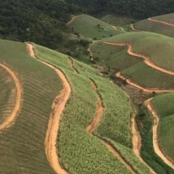 Pernambuco deve ter um crescimento de 7% em toneladas de cana em 2020