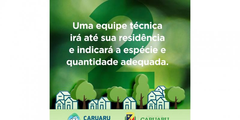 O serviço é realizado por técnicos da Secretaria Executiva de Sustentabilidade.