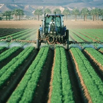 Programa Garantia Safra deve ser liberado em novembro para agricultores familiares