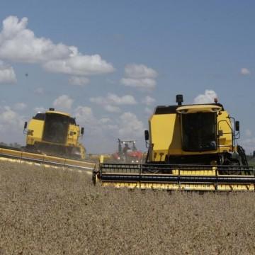 Sudene desenvolve um diagnóstico produtivo para o setor agropecuário e agroindustrial