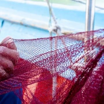 Pescadores de áreas atingidas por óleo começam a receber auxílio financeiro