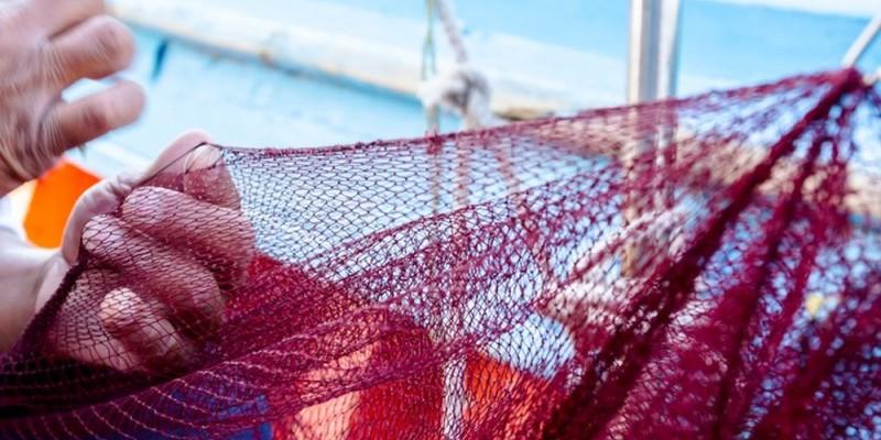 Em Pernambuco, 4.236 pescadores, distribuídos em 12 cidades do estado, estão com o cadastro em dia