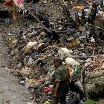 De olho no mercado do lixo, Locar amplia atuação e chega a São Paulo