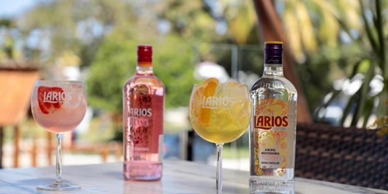 A companhia nipo-americana, que já lidera as vendas de scotch whisky com a marca Teacher's, inova trazendo o gin mais vendido na Espanha