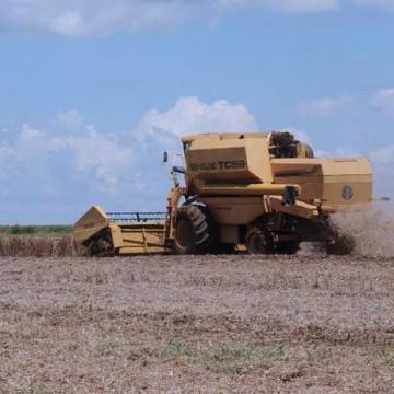 Governo fixa ações para avaliar importação de produtos agropecuários