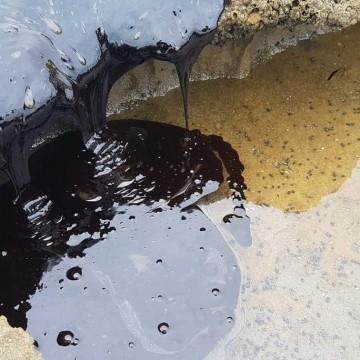 Federação internacional não encontra origem de manchas de óleo no Nordeste