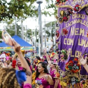 Bloco Nem Com Uma Flor desfila na quinta-feira (20) no Recife