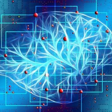 Fábrica de Negócios por trás da Inteligência Artificial em Suape