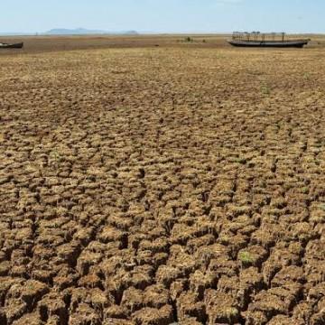 Dia 17 de Junho é celebrado o dia Mundial do combate à seca e à desertificação