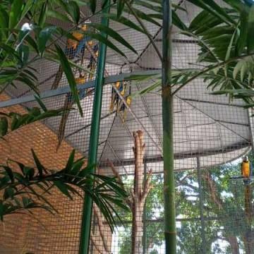 Mini Zoo do Parque Treze de Maio tem gaiolas recuperadas por reeducandos do Patronato Penitenciário e da Seres
